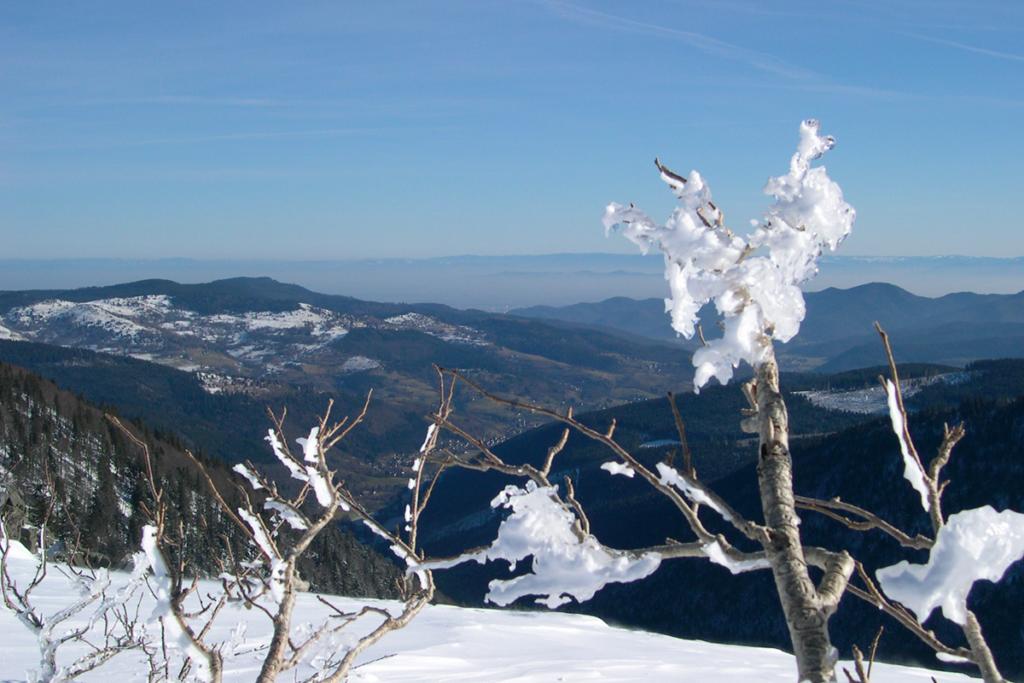 Les Vosges, raquettes aux pieds